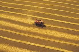 modernagriculture
