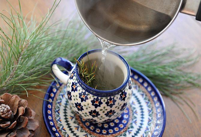 670px-Pine-needle-tea-3