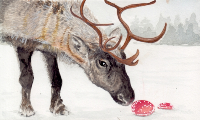 4-deer6