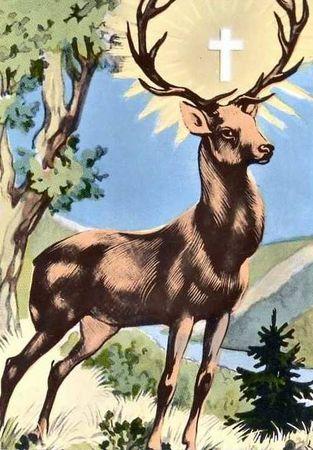 deersun