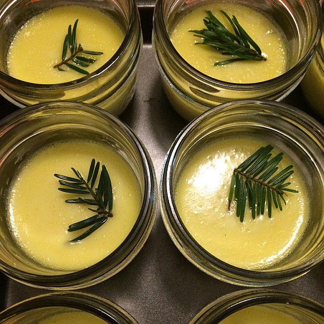 Creamy, fragrant Grand Fir Custard