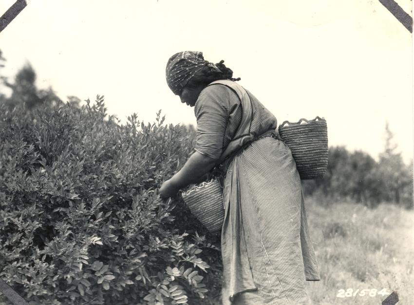 rewildingwomen1