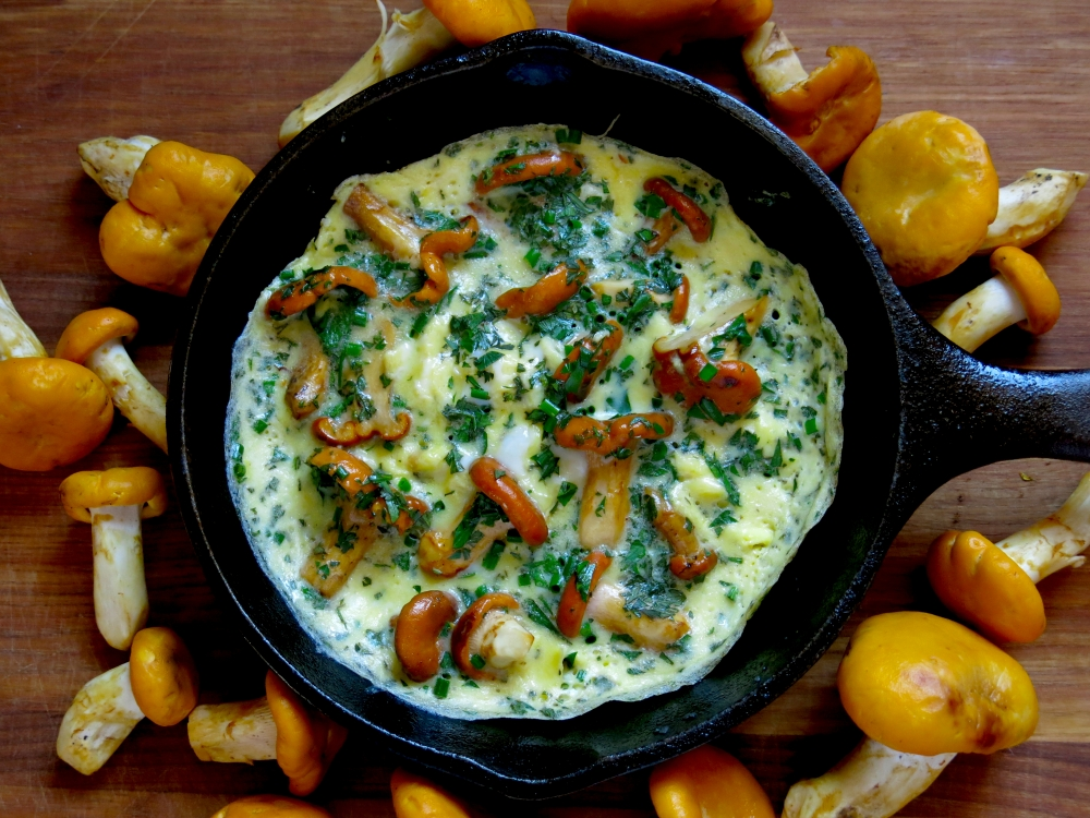 Chanterelle-Omelet-From-Above