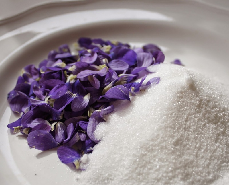 violet sugar 8.jpg