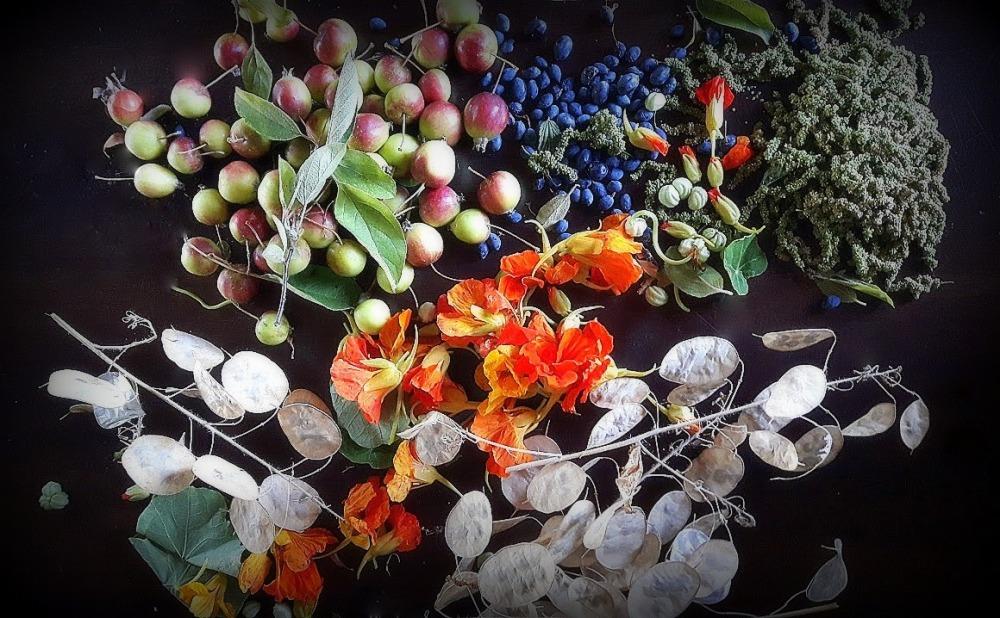 harveststilllife
